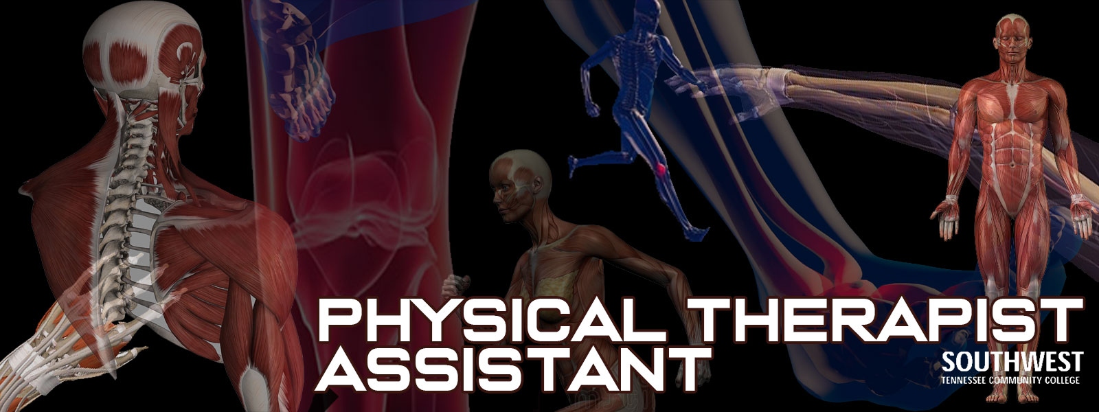 Physical Therapy Assistant Program.